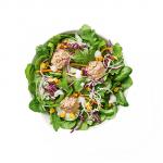 Creamy_Tuna_Salad-small-1.png